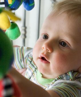 Infant's Vision